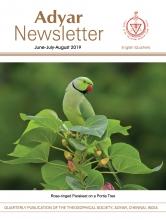 Adyar Newsletter Aug 2019 Cover Image