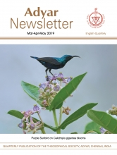 Adyar Newsletter May 2019 Cover Image
